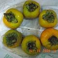 漂亮低脆紅柿