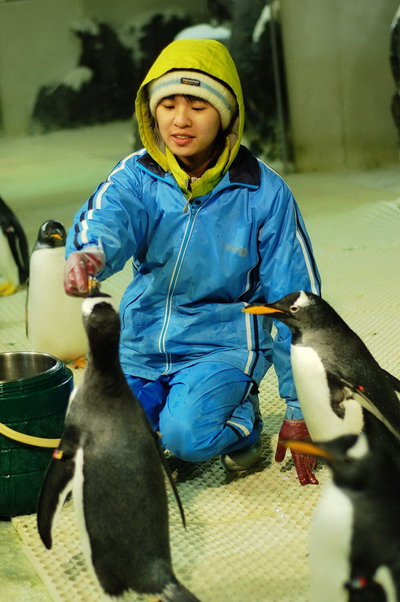 企鵝餵食 2.jpg