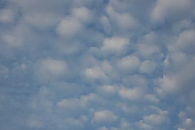 早晨六點的雲 (1).jpg