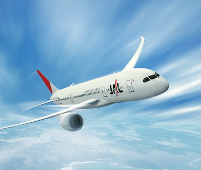 JAL AIRPLANE PHOTO.jpg