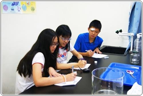 暑期英文班3