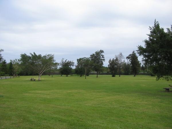 森林公園裏的美麗草原