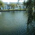 民宿前的美麗湖畔