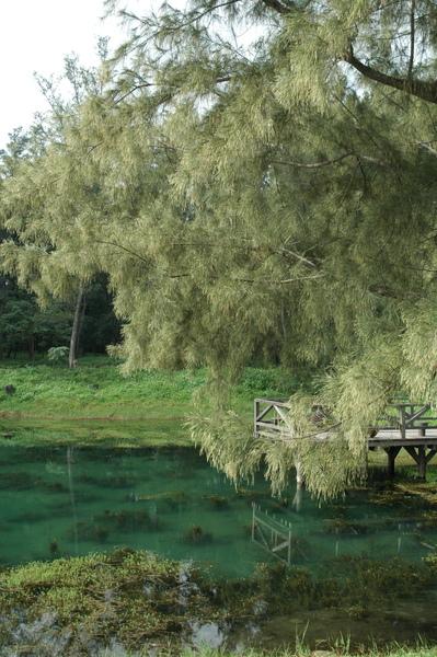 琵琶湖 景四