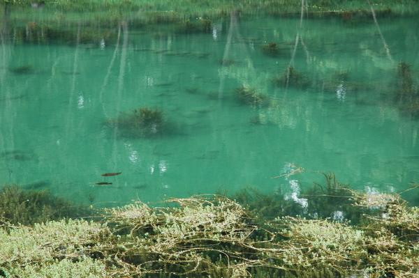 琵琶湖 景五