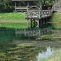琵琶湖 景六