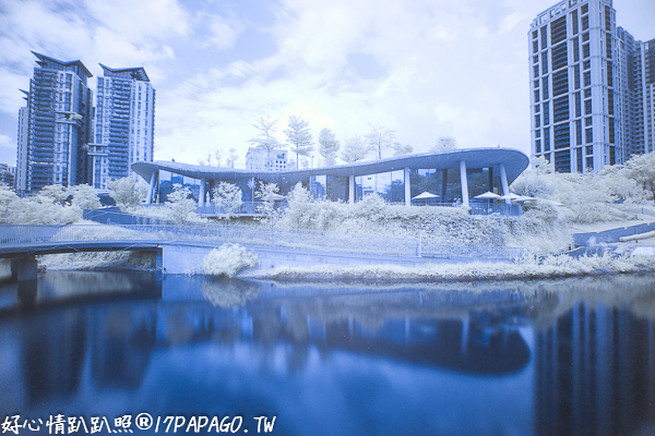 IMG_2917-2.jpg