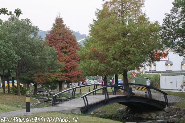 台中北屯|新都生態公園旁的和祥五街生態園道-小橋、流水、落羽松、楊柳、人行步道
