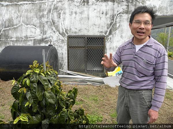 郭先生解釋這個自己交叉授粉的新種,不知道好不好喝