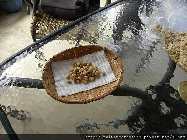 一般水洗豆