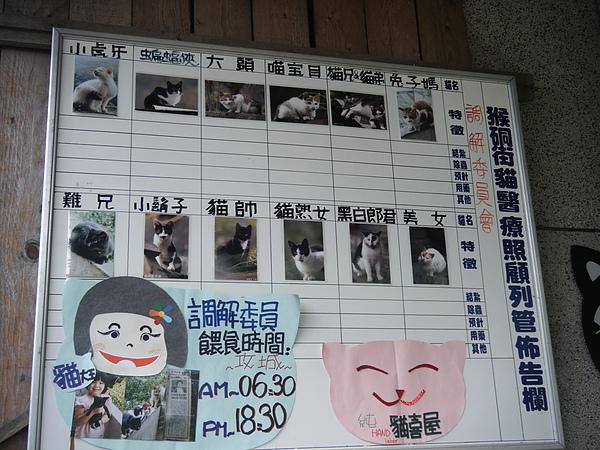 猴硐貓3.JPG