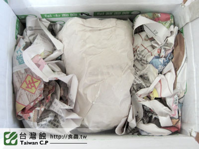 台灣蝕-0117-出貨品管-1.jpg