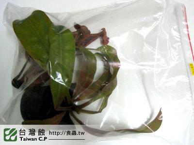 台灣蝕-1221-花蓮林先生-出貨品管-1.jpg