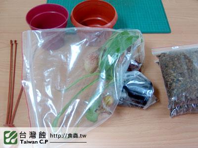 台灣蝕-2010-10-28-出貨品管-2.jpg