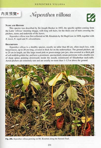 台灣蝕-食蟲書籍-Pitcher-Plants-of-Borneo-內頁_01.jpg