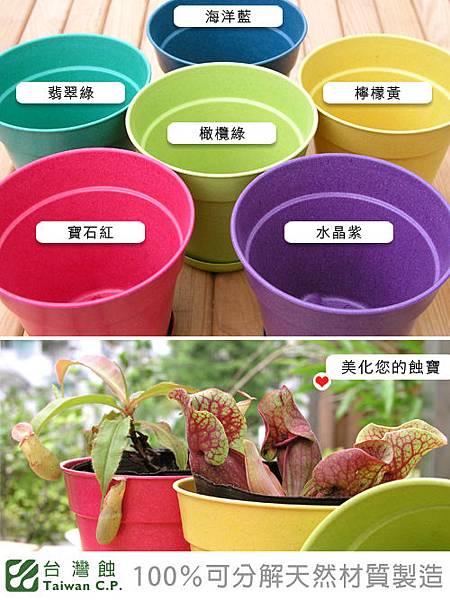 環保花盆_03.jpg