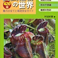 台灣蝕_食蟲植物世界_01.jpg