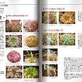 台灣蝕_食蟲植物世界_03.jpg