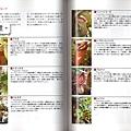 台灣蝕_食蟲植物世界_06.jpg