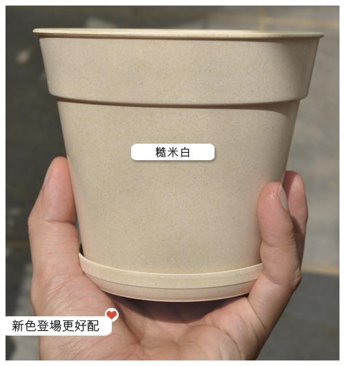台灣蝕-5吋環保彩盆_04.jpg