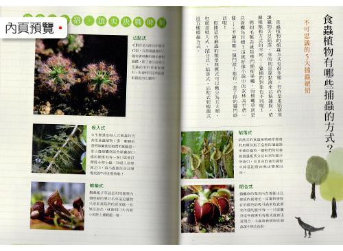 台灣蝕_食蟲植物新手指南_05.jpg