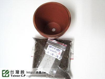 台灣蝕-0131-出貨品管-1.jpg