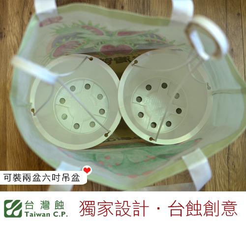 台灣蝕-不織布環保購物袋-Shopping Bag_05.jpg