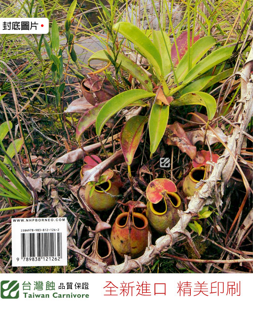 台灣蝕-食蟲書籍-Pitcher-Plants-of-Borneo_04.jpg