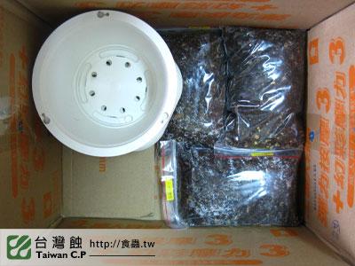 台灣蝕-1213-出貨品管-5.jpg