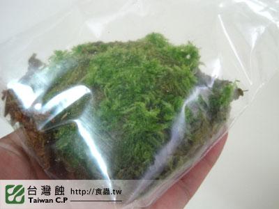 台灣蝕-1124-出貨品管-1.jpg
