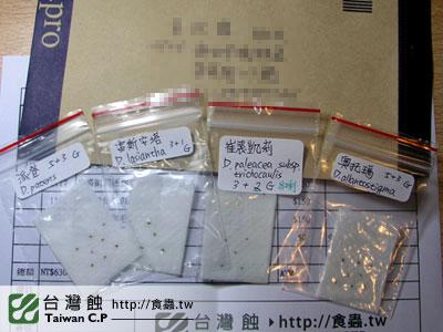 台灣蝕-0207-吳先生出貨品管-1.jpg