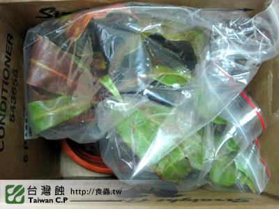 台灣蝕-1116-出貨品管-2.jpg