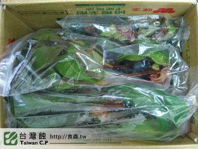 台灣蝕-1125-出貨品管-5.jpg