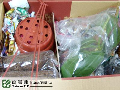台灣蝕-2010-10-28-出貨品管-1.jpg