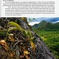台灣蝕-食蟲書籍-Pitcher-Plants-of-Borneo-內頁_03.jpg