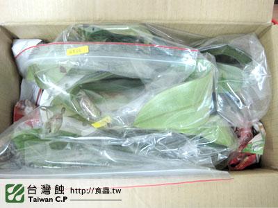 台灣蝕-0221-陳先生出貨品管-3.jpg