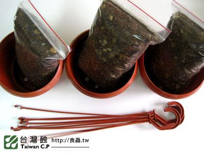 台灣蝕-1102-出貨品管-5.jpg