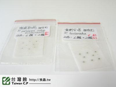 台灣蝕-0127-出貨品管-1.jpg