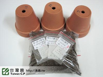 台灣蝕-0221-劉小姐出貨品管-1.jpg