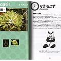 台灣蝕-食蟲書籍-食蟲植物養育的方法_04.jpg