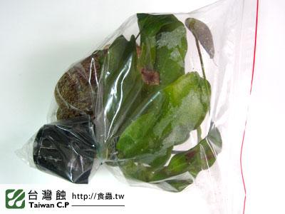 台灣蝕-1213-出貨品管-3.jpg