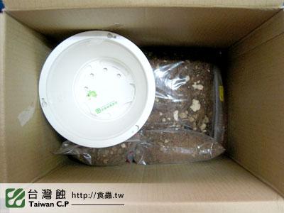 台灣蝕-1221-台東莊小姐-出貨品管-3.jpg