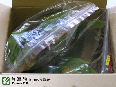 台灣蝕-0206-鄭先生出貨品管-4.jpg