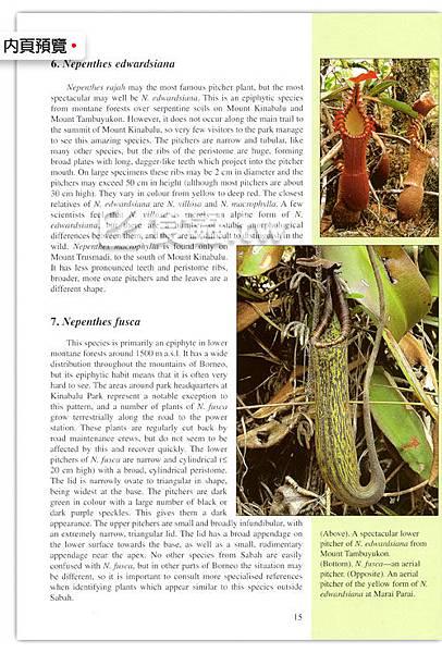 台灣蝕-食蟲書籍-Pitcher-Plants-of-Sabah-內頁03.jpg