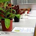台灣蝕-1021南軟展售會-13.jpg