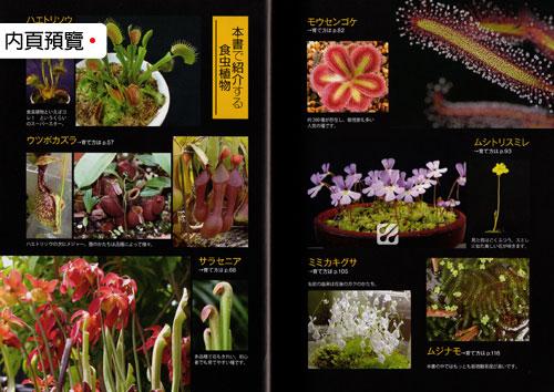 台灣蝕-食蟲書籍-最喜歡食蟲植物_03.jpg