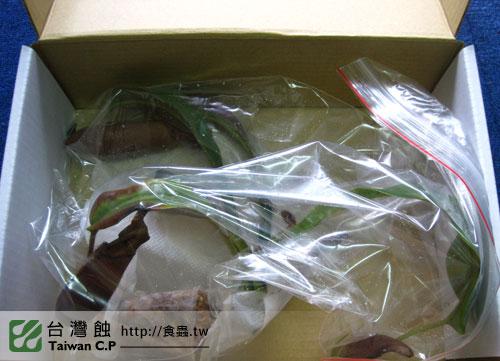 2010-09-20-羅先生-豬籠草出貨.jpg