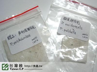 台灣蝕-1210-出貨品管-2.jpg