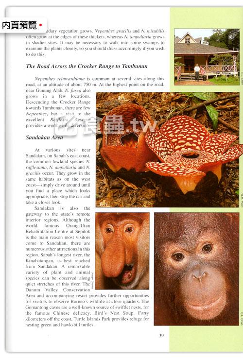 台灣蝕-食蟲書籍-Pitcher-Plants-of-Sabah-內頁05.jpg