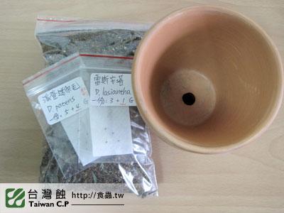 台灣蝕-0217-出貨品管-1.jpg